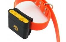 Как выбрать GPS-трекер для собаки? Лучшие модели и их цены
